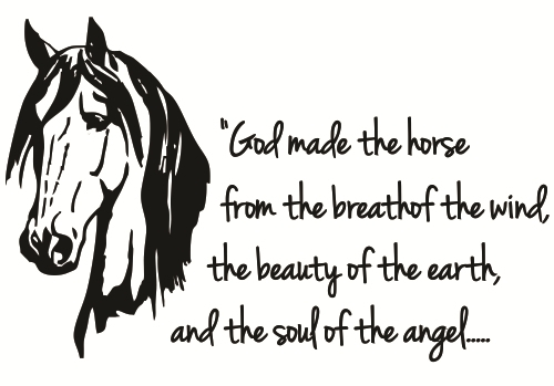 Horse-quote-11