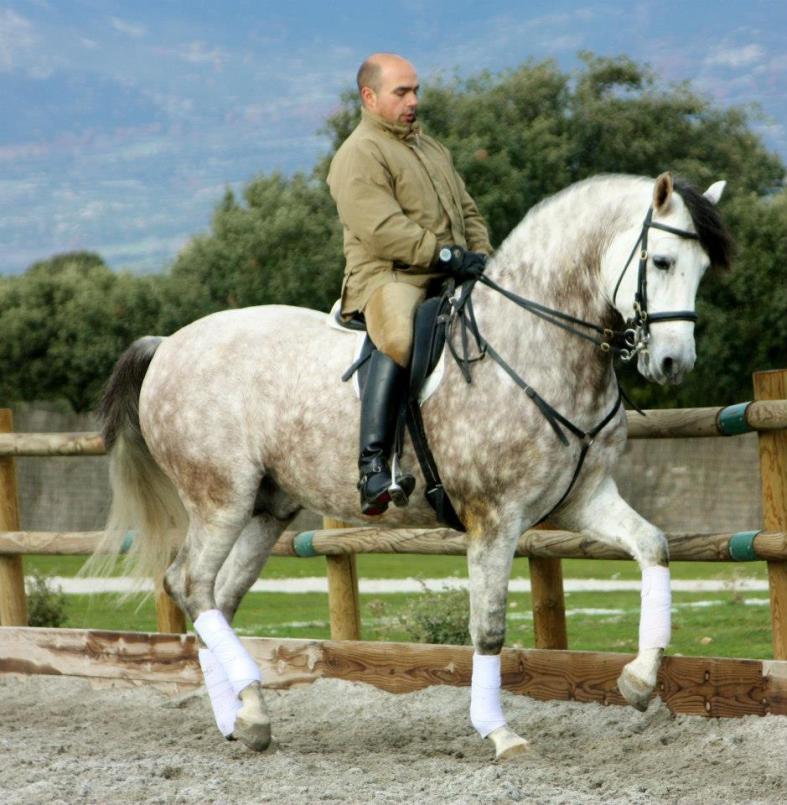 julian y sus caballos 2