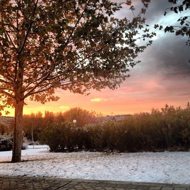 dia de invierno en madrid