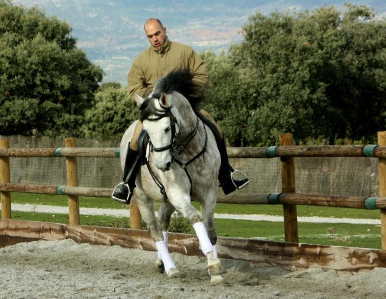 doma caballos julian 2