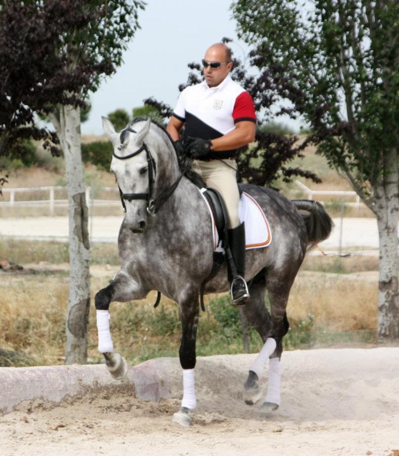 doma caballos julian