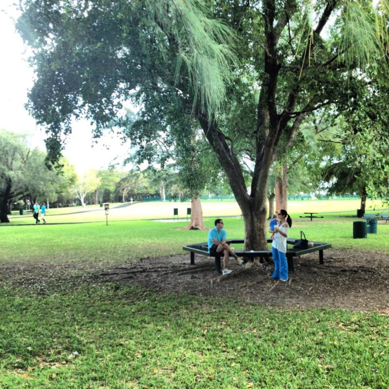 coconut grove park