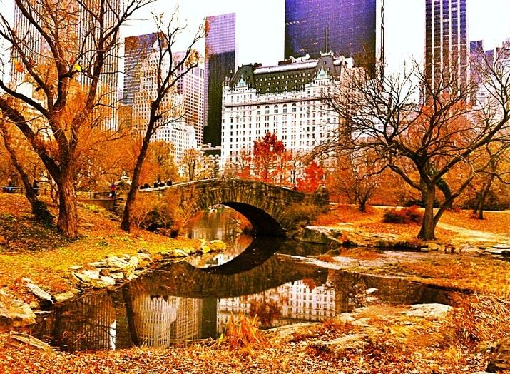central-park en otoño fuente pinterest 2